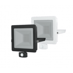 ECO FLOODLIGHT 50W