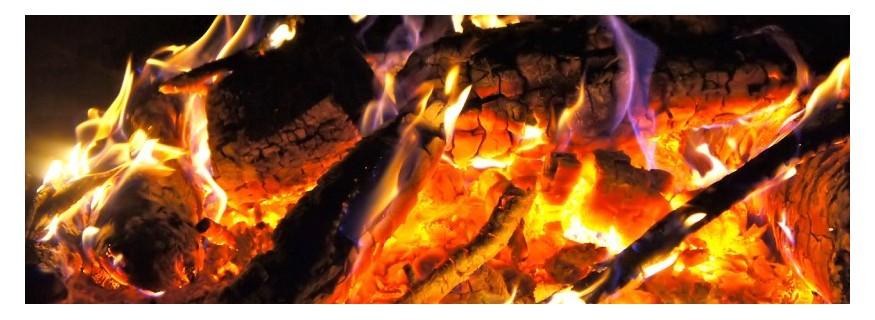 Fuego net